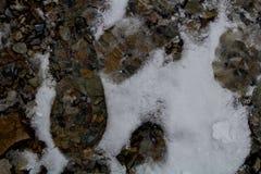 Huellas en la nieve a lo largo de un rastro alpino del barranco/de Provo, Utah de la roca Foto de archivo libre de regalías