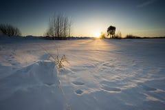 Huellas en la nieve Puesta del sol del invierno imagen de archivo libre de regalías