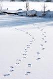 Huellas en la nieve sobre el hielo holandés imágenes de archivo libres de regalías