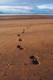Huellas en la playa Fotos de archivo libres de regalías