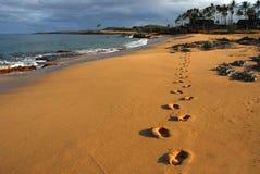 Huellas en la playa Fotografía de archivo libre de regalías