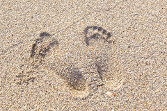 Huellas en la playa arenosa Imágenes de archivo libres de regalías