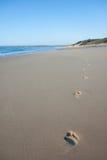 Huellas en la playa temprano por mañana en el amanecer Imágenes de archivo libres de regalías