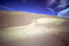 Huellas en las dunas de arena - grandes dunas de arena NP Imagen de archivo libre de regalías