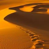 Huellas en las dunas de arena - Sáhara, Libia Imágenes de archivo libres de regalías