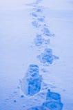 Huellas en nieve Foto de archivo libre de regalías