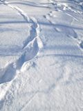 Huellas en nieve Imágenes de archivo libres de regalías