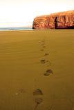 Huellas en playa arenosa en un día hermoso Fotos de archivo