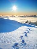 Huellas en una nieve imagen de archivo libre de regalías