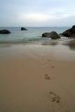 Huellas en una playa arenosa, Foto de archivo