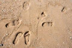 Huellas en una playa de la arena de la costa Imagen de archivo libre de regalías