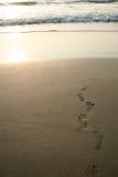 Huellas humanas y playa Fotos de archivo libres de regalías