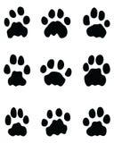 Huellas negras de leones imagen de archivo libre de regalías
