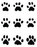 Huellas negras del leopardo imagen de archivo