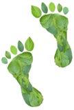 Huellas verdes Imagen de archivo libre de regalías