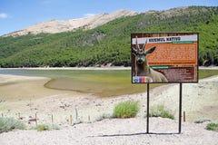Huemul Lagoon, Chile Royalty Free Stock Photos