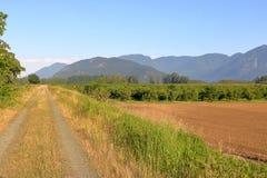 Huerta de la avellana y alrededores naturales Imagen de archivo libre de regalías