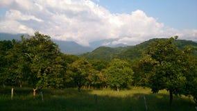 Huerta en un pueblo de montaña imagen de archivo