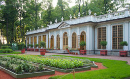 Huerto del verano en el St Petersburg Fotos de archivo libres de regalías