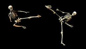 Huesos de la lucha Imagenes de archivo