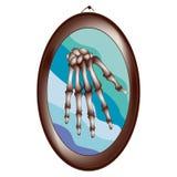Huesos de mano artísticos Imagen de archivo libre de regalías