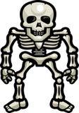 Huesos esqueléticos Fotografía de archivo libre de regalías