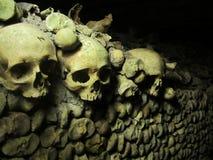 Huesos humanos Foto de archivo libre de regalías