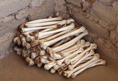 Huesos humanos antiguos Fotos de archivo