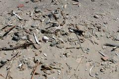 Huesos humanos antiguos en la arena Fotografía de archivo