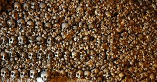 Huesos humanos empilados Fotografía de archivo