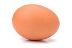 Huevo Imagenes de archivo