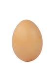 Huevo aislado en blanco Imagen de archivo libre de regalías