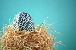 Huevo azul y negro de la menta pintada a mano adornada del snakeskin del golpeteo de Pascua en una jerarquía de la paja en fondo  Fotografía de archivo libre de regalías