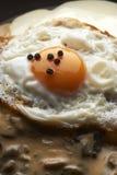 Huevo cocinado fotos de archivo