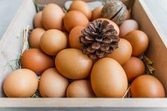 Huevo con el heno y el pino Fotografía de archivo