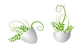 Huevo con la hierba creciente Fotografía de archivo libre de regalías