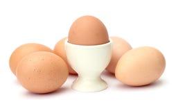 Huevo con la huevera Fotos de archivo libres de regalías