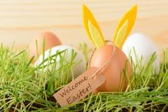Huevo con los oídos del conejito para el día de fiesta de Pascua Fotos de archivo libres de regalías