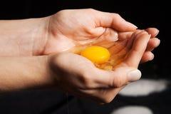 Huevo crudo en las manos que se sostienen y que protegen imagen de archivo