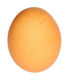 Huevo de gallina Imagenes de archivo