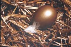 Huevo de jerarquía Fotografía de archivo
