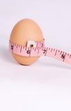 Huevo de la dieta Fotografía de archivo libre de regalías