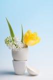 Huevo de la flor Imagen de archivo libre de regalías