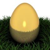 Huevo de oro ilustración del vector