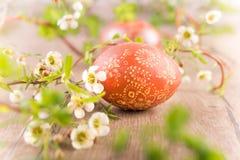 Huevo de Pascua adornado Fotos de archivo libres de regalías