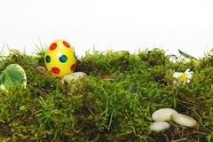 Huevo de Pascua amarillo colorido en musgo Imágenes de archivo libres de regalías