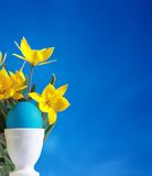 Huevo de Pascua azul y tulipanes amarillos Imágenes de archivo libres de regalías