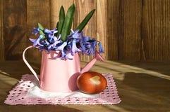 Huevo de Pascua coloreado con la cáscara y los jacintos de la cebolla fotos de archivo libres de regalías