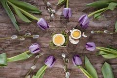 Huevo de Pascua con los tulipanes y la ramita del sauce Corte el huevo en la composición del círculo con los tulipanes y las rami Foto de archivo libre de regalías