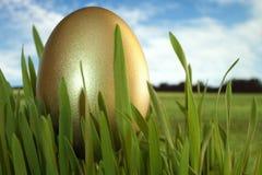 Huevo de Pascua del oro Imágenes de archivo libres de regalías